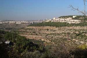 Surrounded by settlements, this open land is to be confiscated by Israel.